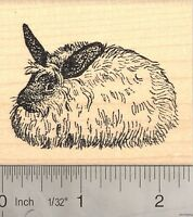 French Angora Rabbit Rubber Stamp, Long Haired Wool Bunny J4808 Wm