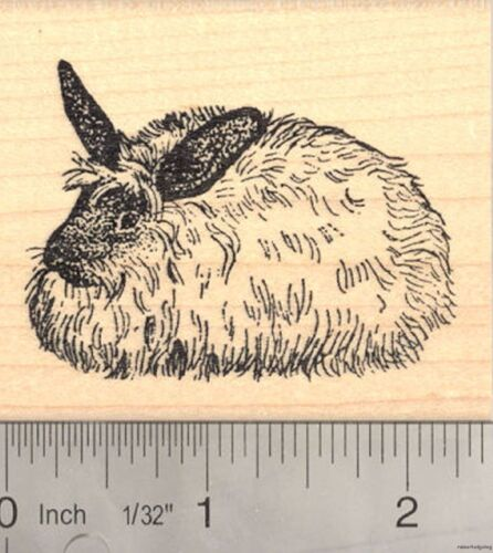 French Angora Rabbit Rubber Stamp Long haired Wool Bunny J4808 WM