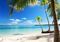 Karibik Meer & Strand Tapeten Wandbild 3.66x2.54 M Nicht Gewebt Schlafzimmer