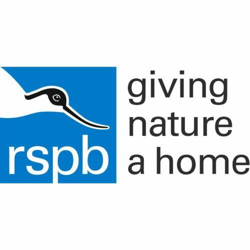 00556 RSPB Pin BadgeStork carrying napkinCelebratory bringing baby