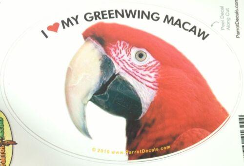Greenwing Macaw Parrot Exotic Bird Vinyl Decal Bumper Sticker