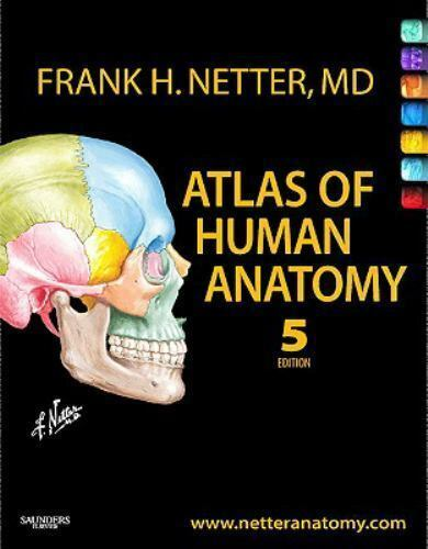Netter Basic Science Atlas Of Human Anatomy By Frank H Netter