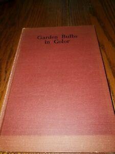 Vintage-1945-Garden-Bulbs-in-Color-Hardcover-McFarland-Hatton-Foley