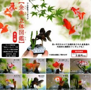 Goldfish-picture-book-All-8-set-Gashapon-mascot-toys-Complete-set