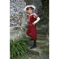 Jubilee Tudor Prince fancy dress up BNWT 3-11yo Charming Royal Romeo Costume Boy