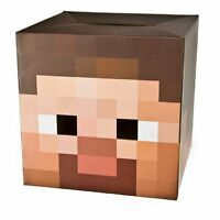 Minecraft Box Head Cardboard Fancy Dress Costume Party-steve