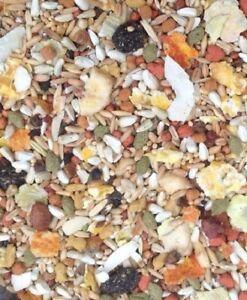 Cockatiel-Conure-Safflower-Food-Higgins-Natural-Diet-Fruit-Mix-Lovebird