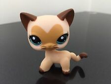 Littlest Pet Shop Cat #3573 Tan / Brown Heart Face Short Hair USA SELLER