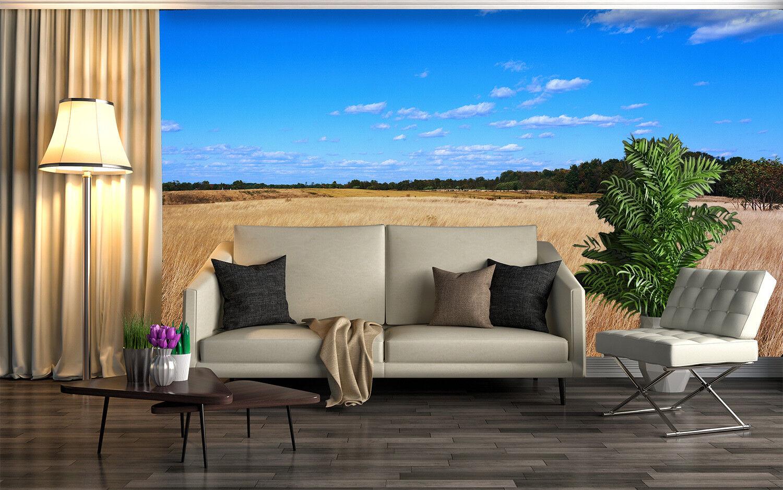 3D Blauer Himmel Himmel Himmel Felder 744 Tapete Wandgemälde Tapete Tapeten Bild Familie DE | Günstigstes  | Online einkaufen  | Diversified In Packaging  2937a7