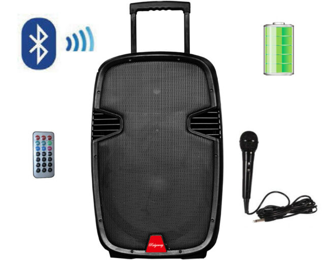 "Ridgeway QS-10BR 10"" Portable Bluetooth Speaker LED Lights MIC USB SD FM  AUX"