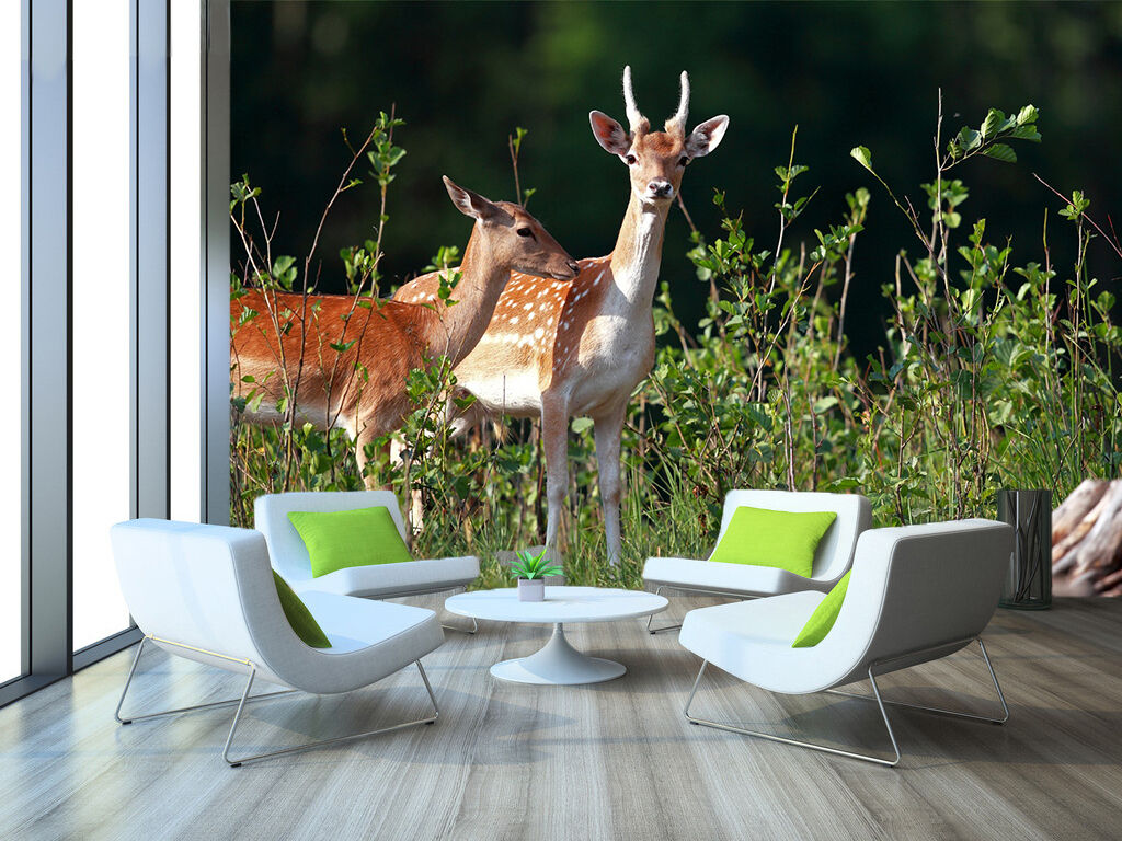 3D Grass Deer 883 Wallpaper Mural Paper Wall Print Wallpaper Murals UK
