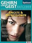 Ängste und Depressionen (2015, Kunststoffeinband)