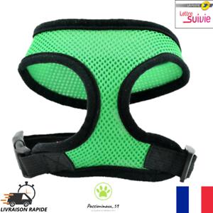 Harnais-Souple-Respirant-Vert-et-Noir-Chien-Chiot-et-Chat-XS-S-M-L-XL-Neuf-FR