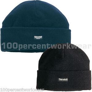 20ca55ae6d7 Delta Plus Panoply KARA Polar Fleece Hat Cap Beanie 3M Thinsulate ...