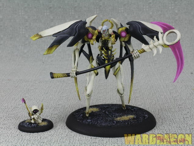 30mm&80mm Relic Knights Knights Knights WDS painted Harbonath the Void Reaper e22 4e348f