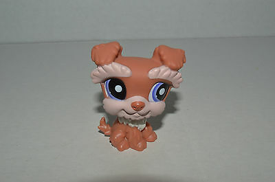Littlest Pet Shop~#1795~Schnauzer~Caramel Peach White~Puppy Dog~Purple Dot Eyes
