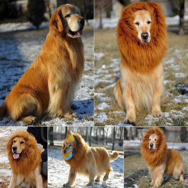 Fancy Pet Costume Lion Mane Large Dog Wig Hair Halloween Festival Party Dress Up