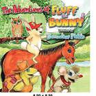 The Adventures of Fluff the Bunny by Bernadine Motto (Paperback / softback, 2007)