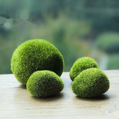 Marimo Moss Balls Artificial Grass Turf Stones Mini Fairy Garden Micro Terrarium