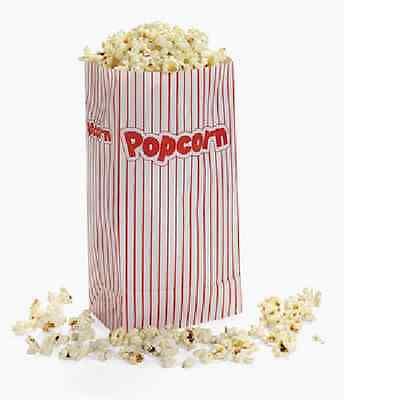 Popcorn Paper Bags 24 Piece Movie Night Party Supplies