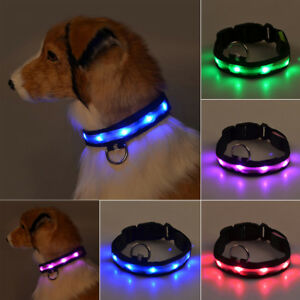LED-collar-de-perro-mascota-luminosa-seguridad-ajustable-luz-etiqueta-Nylon