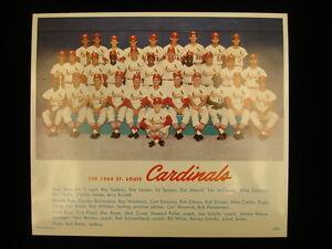 1964-St-Louis-Cardinals-Color-Team-Photograph-8-10