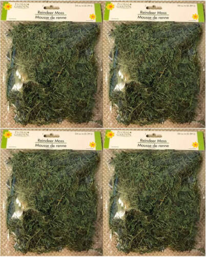 FLORAL REINDEER MOSS For Artificial Arrangements - 24 Cu. In. - LOT (4) - NEW!!!