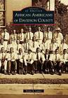 African Americans of Davidson County by Tonya A Lanier (Paperback / softback, 2010)