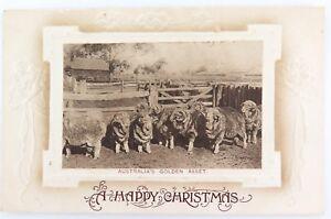 c1910-EMBOSSED-AUSTRALIAN-CHRISTMAS-XMAS-POSTCARD-AUSTRALIA-S-GOLDEN-ASSET-034