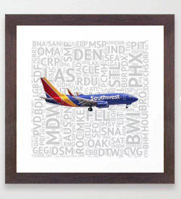 Southwest Airlines   737 with Airport Codes Carry-All Pouch