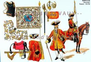 LE PLUMET PLANCHE AR51 MAISON DU ROI CHEVAU-LEGERS ETENDARDS 1745-1748