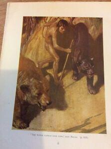69-2-1961-ephemera-book-plate-stuart-Tresilian-Jungle-Book-Mowgli-And-Baloo