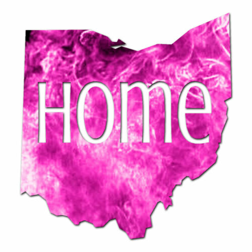 ebn3837 Multiple Colors /& Sizes Vinyl Decal Sticker Ohio Home State