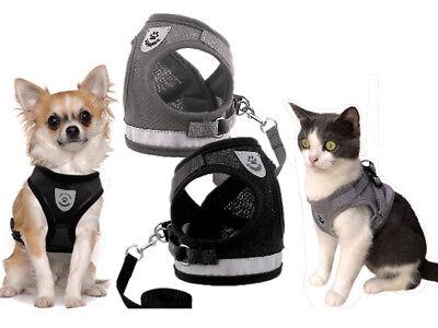 Hundegeschirr Katzengeschirr Mit Leine Reflektoren Mesh Soft Schwarz Grau M-xl