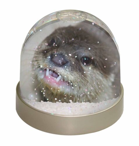 AO-1GL Cheeky Otters Face Photo Snow Globe Waterball Stocking Filler Gift