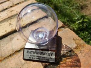 Personalized Baseball Holder Display Case on Wood Finish Base, Baseball Case