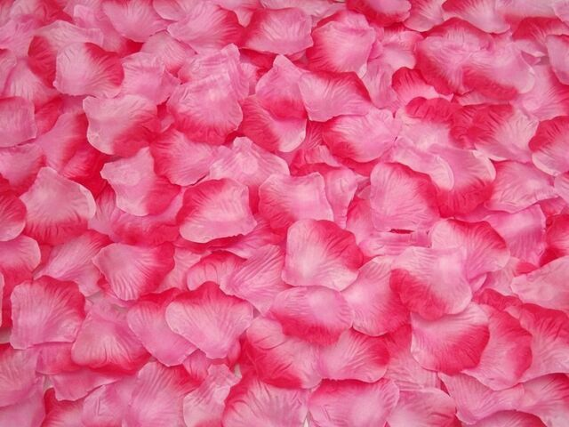 100 Quality Silk Fabric Rose Petals – Wedding Party Table Confetti Decorations