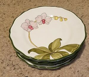 Present-Tense-ORCHID-GARDEN-LIGHT-PINK-11-1-8-034-Dinner-Plates-Set-of-5