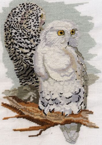 Snowy Owl counted cross stitch kit or chart 14s aida