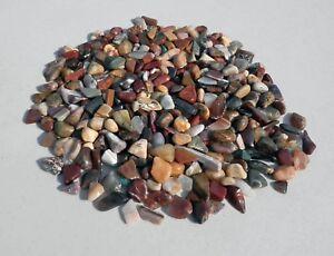 X-Small-Variety-Polished-Rocks-Agate-Jasper-Wood-Gem-Trees-Fairy-Garden