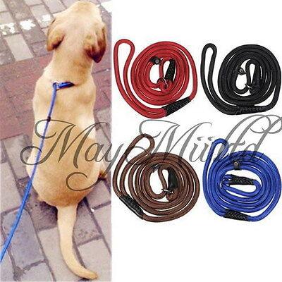 Adjustable Nylon Rope Pet Dog Slip Training P-Leash Walking Leading Collar