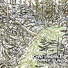 Diaper Island von Chad Vangaalen (2011)