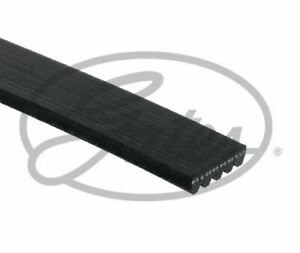 GATES-5PK1153-V-cinghie-scanalate-LHD