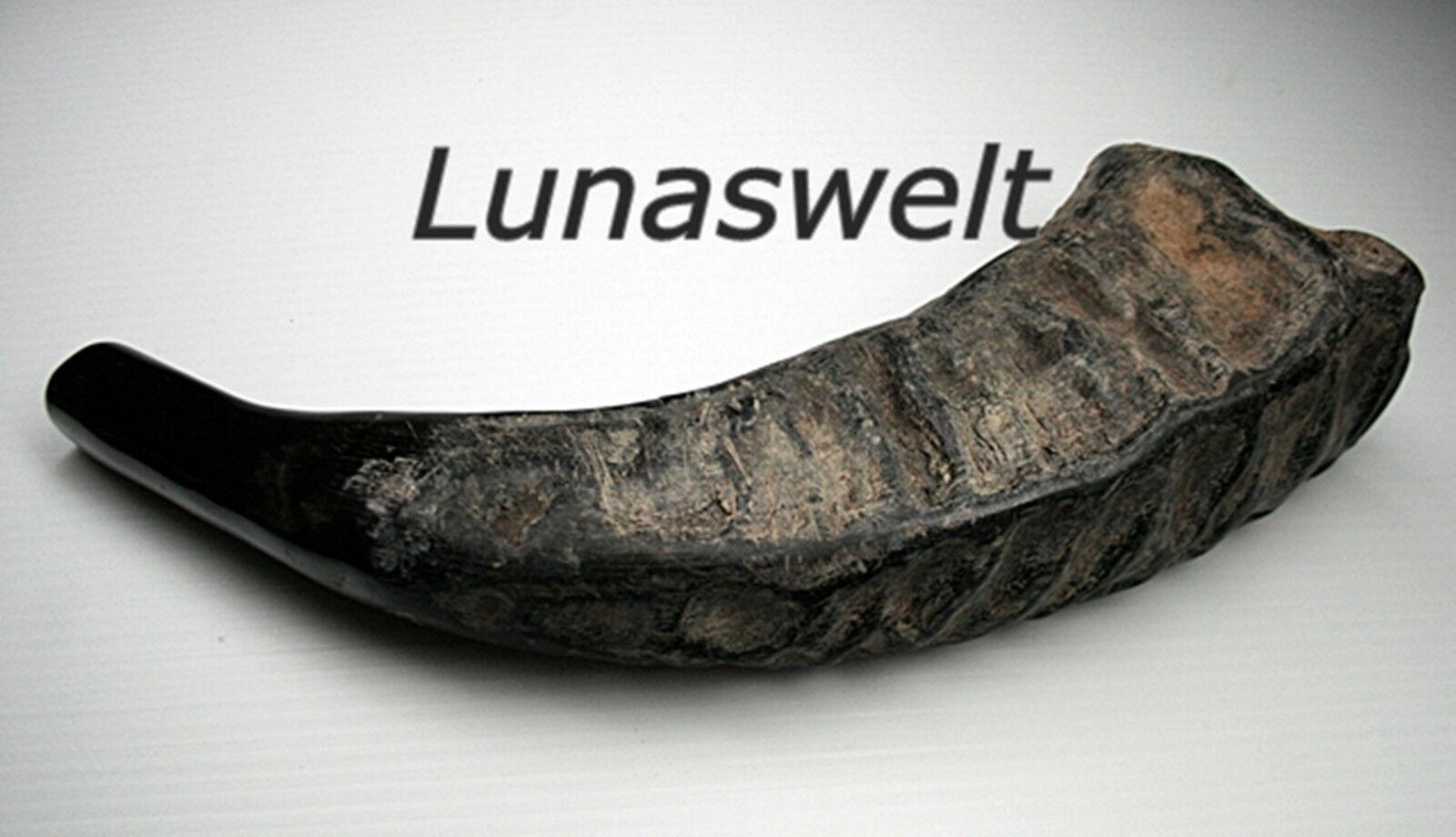 TUWA  Signalhorn Büffelhorn Wasserbüffel 43 cm