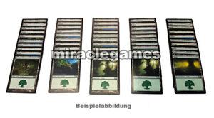 Magic: The Gathering - 50x Forest / Wald, Basic lands, Standardländer, MTG