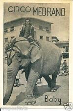 pb 14 Anni 50 CIRCO MEDRANO - Elefante - Cartolina pubblicitaria