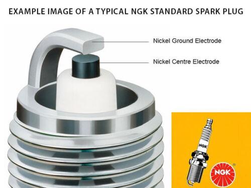 LR8B NGK SPARK PLUG STANDARD 6208 NEW in BOX!