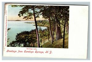 Scenic-Greeting-from-Saratoga-Lake-Springs-NY-c1905-Postcard-J2