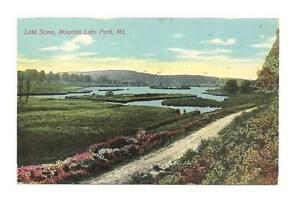 MOUNTAIN-LAKE-PARK-MD-Mt-DPO-Antique-1910-Postcard