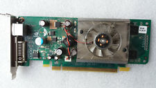 SFF HP 445743-001 445681-001 GEFORCE 8400GS 256MB PCIE DVI TV-OUT WINDOWS 10